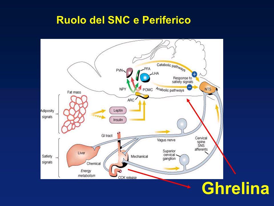 Ruolo del SNC e Periferico