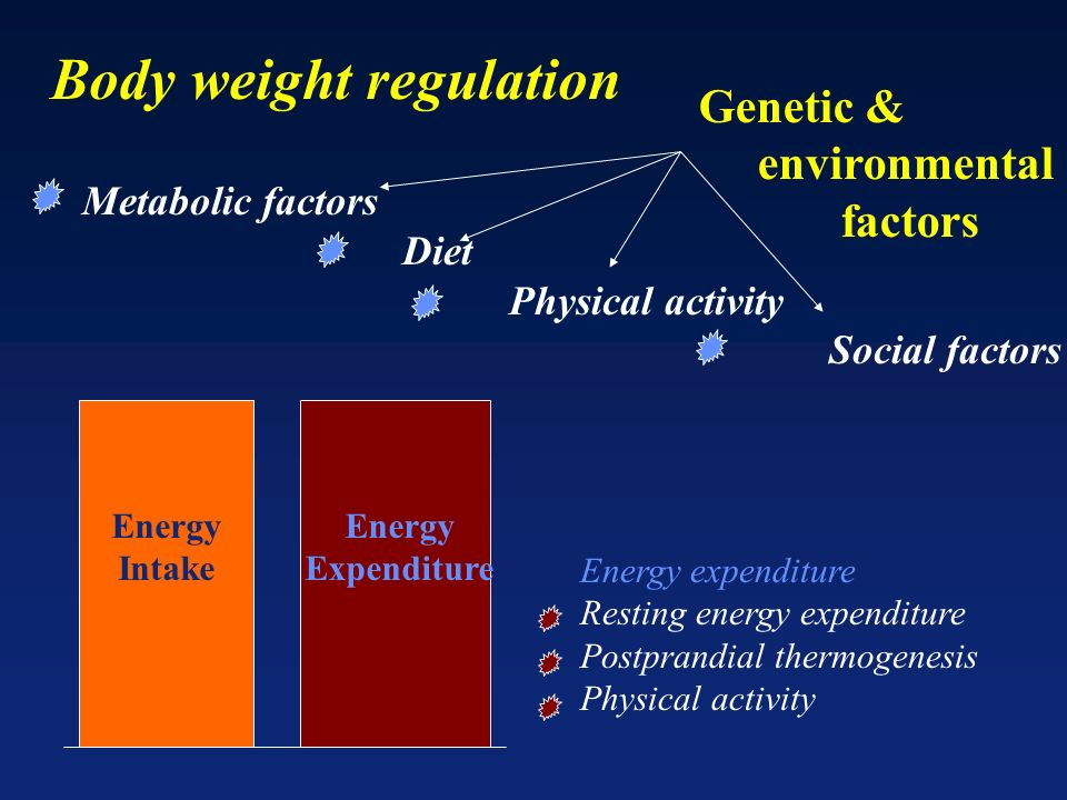 Body weight regulation
