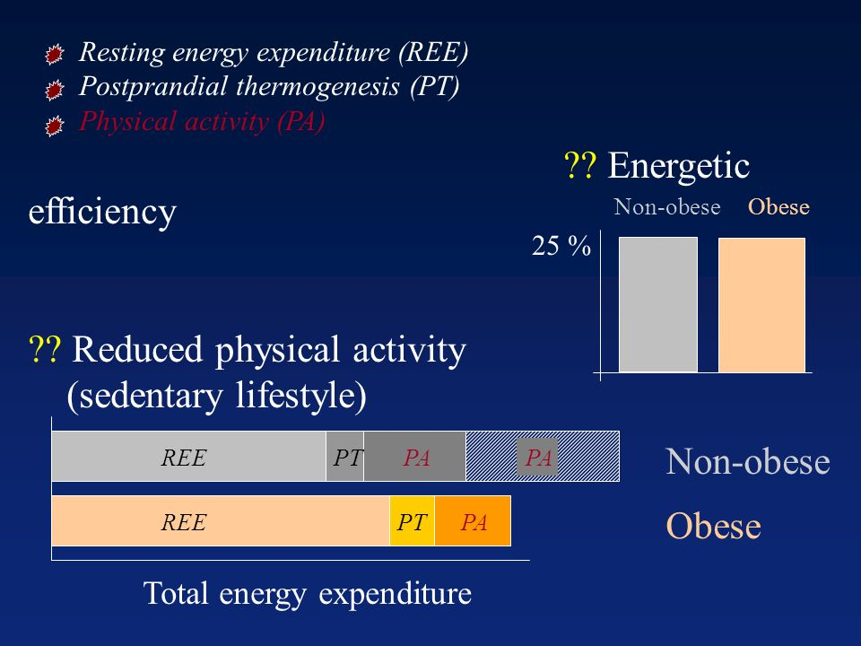 Reduced physical activity (sedentary lifestyle)