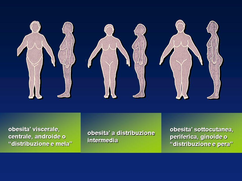 obesita' viscerale, centrale, androide o distribuzione e mela