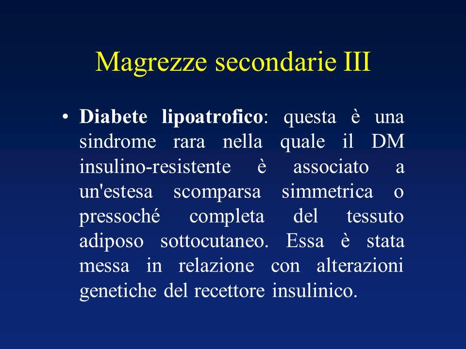 Magrezze secondarie III