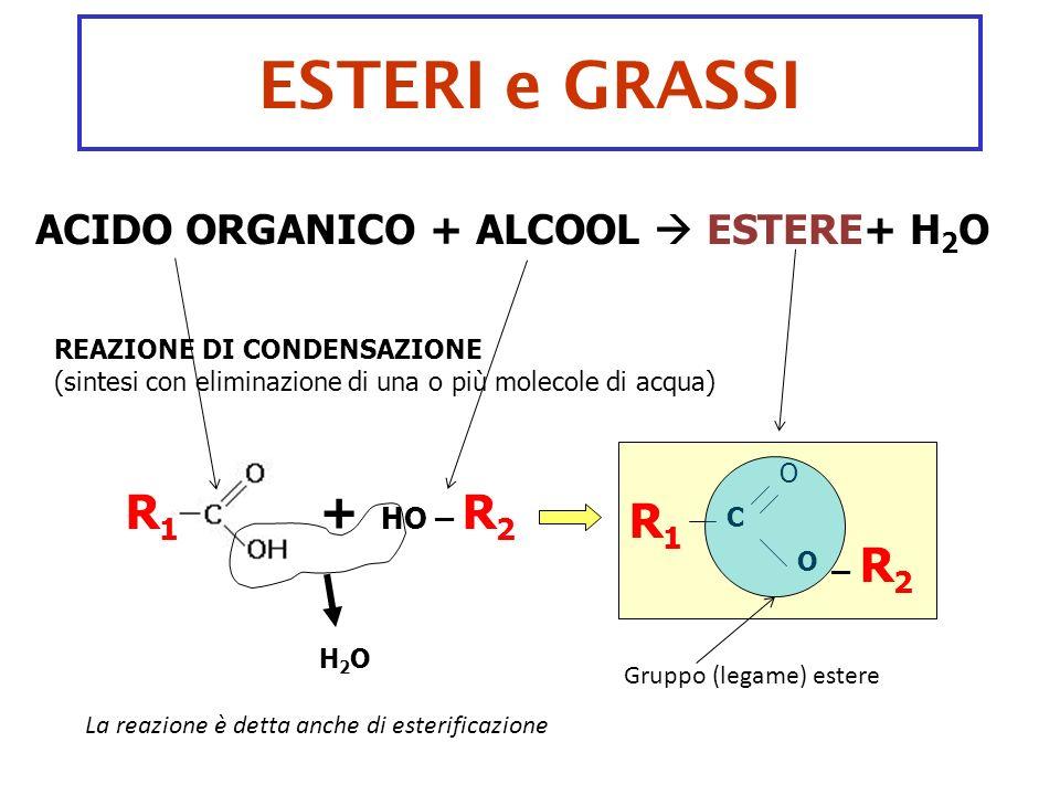 ESTERI e GRASSI R1 + R1 ACIDO ORGANICO + ALCOOL  ESTERE+ H2O HO – R2