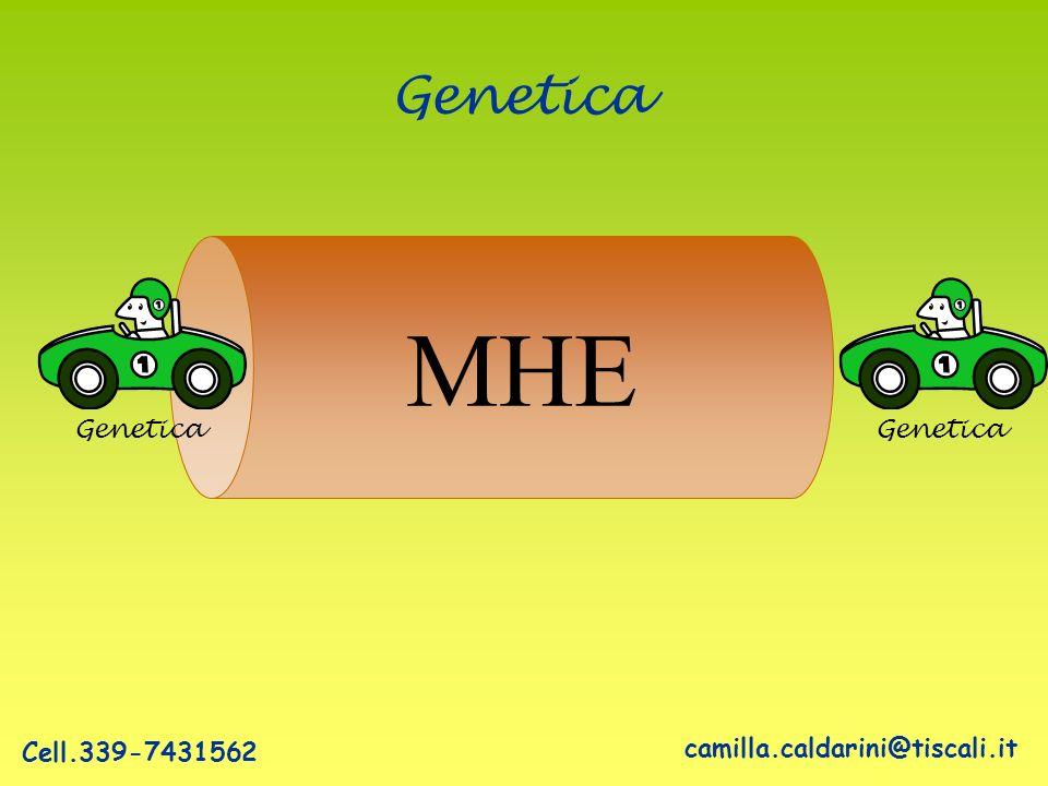 MHE Genetica Genetica Genetica Cell.339-7431562
