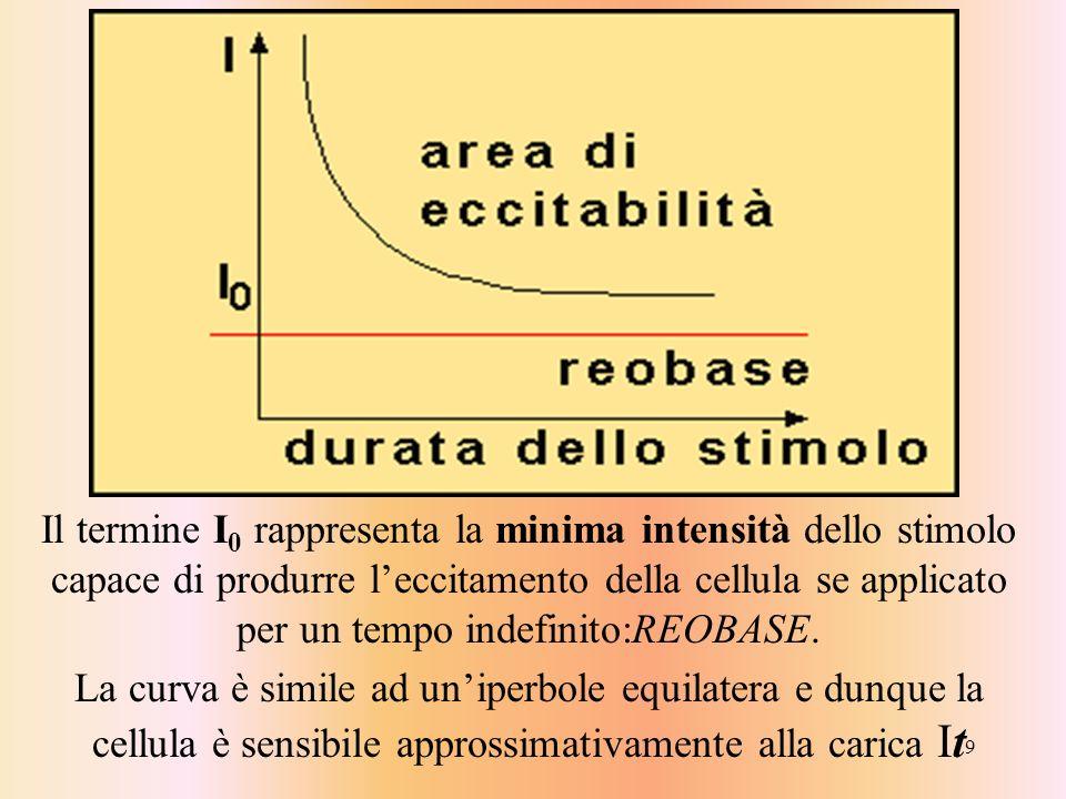 Il termine I0 rappresenta la minima intensità dello stimolo capace di produrre l'eccitamento della cellula se applicato per un tempo indefinito:REOBASE.