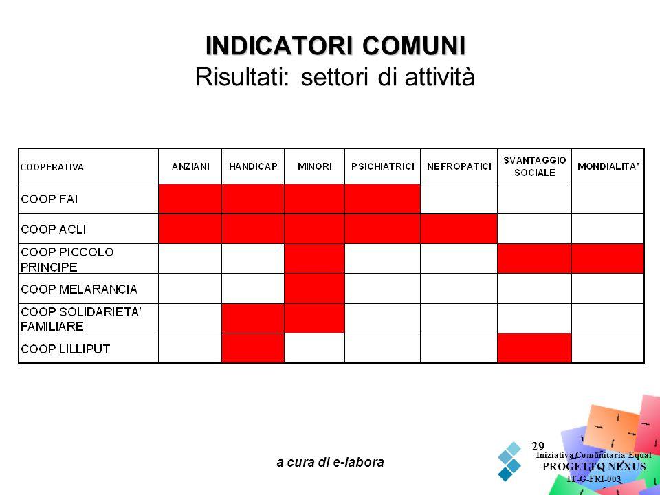 INDICATORI COMUNI Risultati: settori di attività