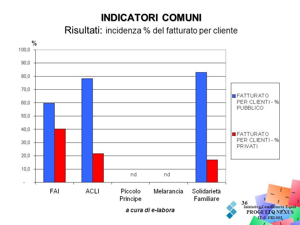 INDICATORI COMUNI Risultati: incidenza % del fatturato per cliente