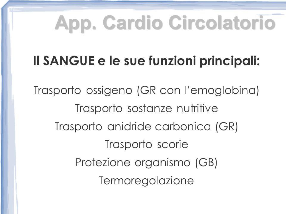 Il SANGUE e le sue funzioni principali: