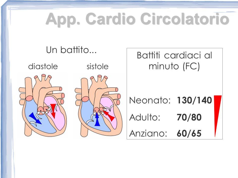 Battiti cardiaci al minuto (FC)