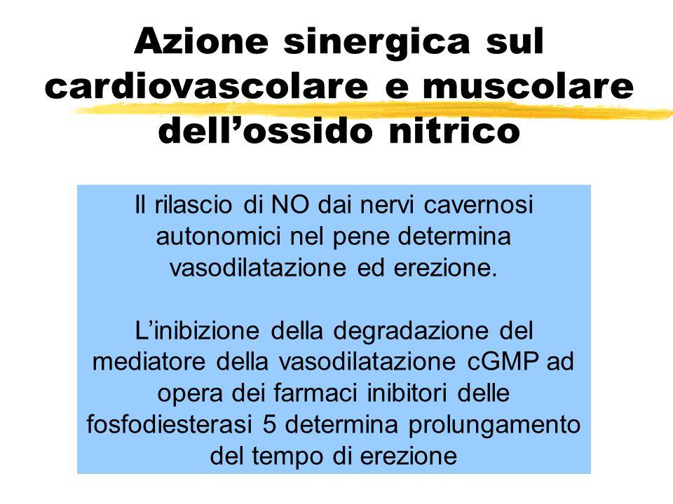 Azione sinergica sul cardiovascolare e muscolare dell'ossido nitrico