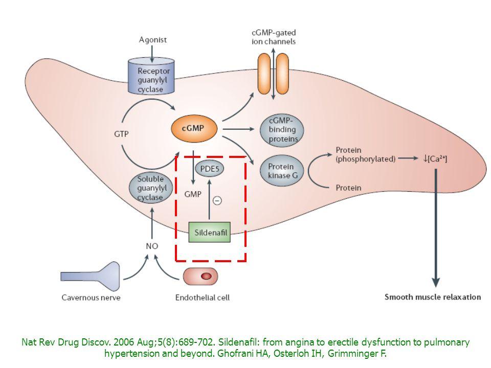 Nat Rev Drug Discov. 2006 Aug;5(8):689-702