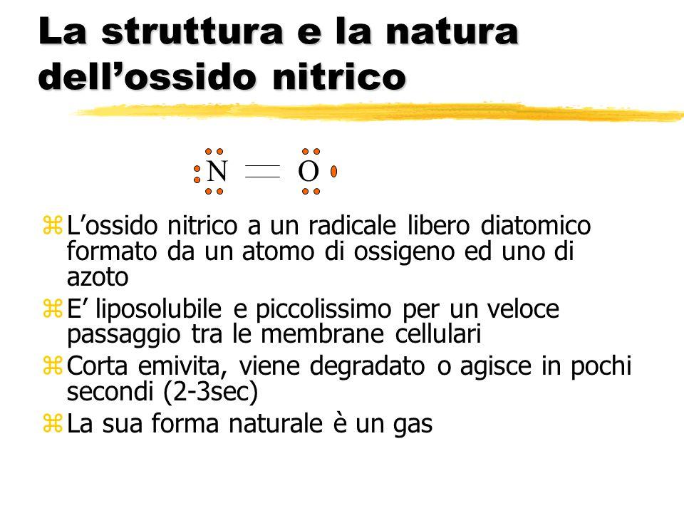 La struttura e la natura dell'ossido nitrico