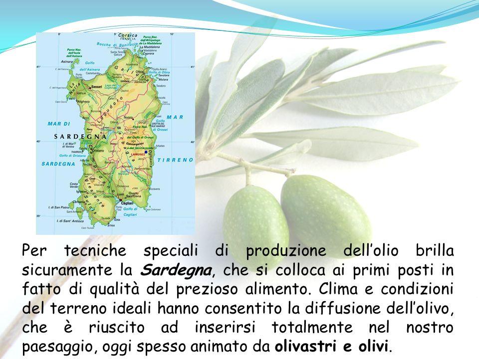 Per tecniche speciali di produzione dell'olio brilla sicuramente la Sardegna, che si colloca ai primi posti in fatto di qualità del prezioso alimento.