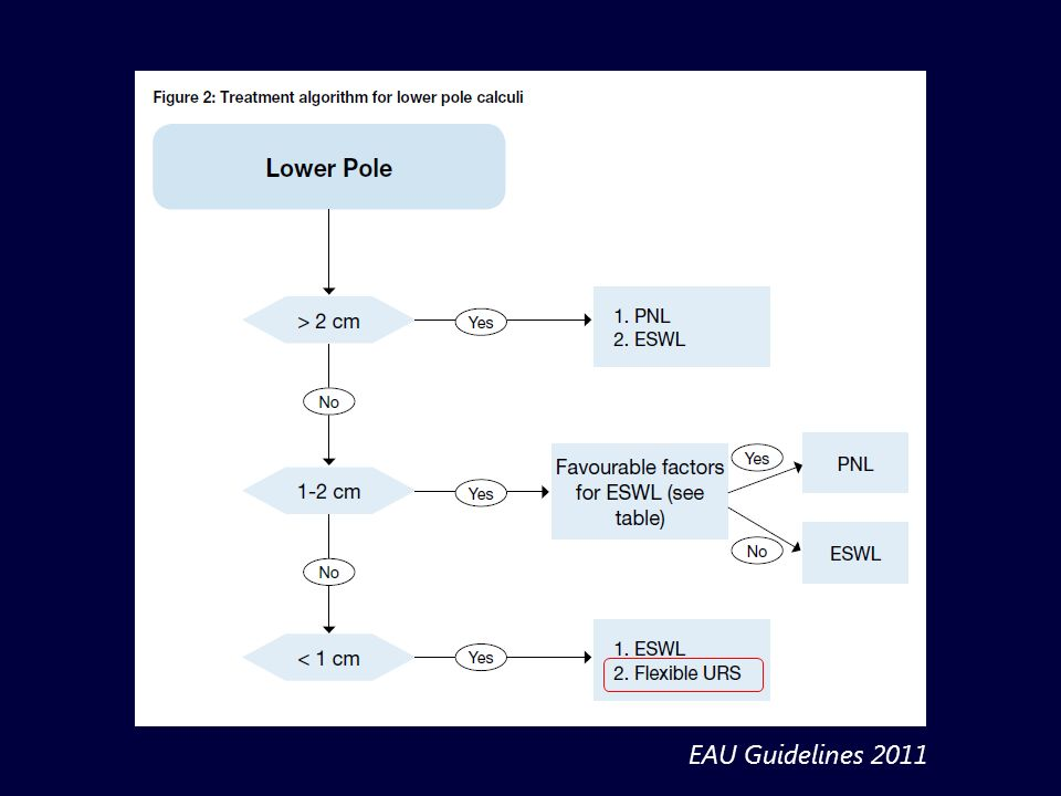 EAU Guidelines 2011