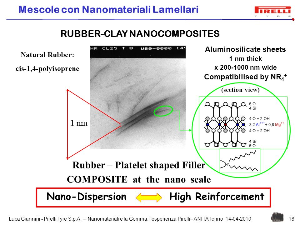 Rubber – Platelet shaped Filler COMPOSITE at the nano scale