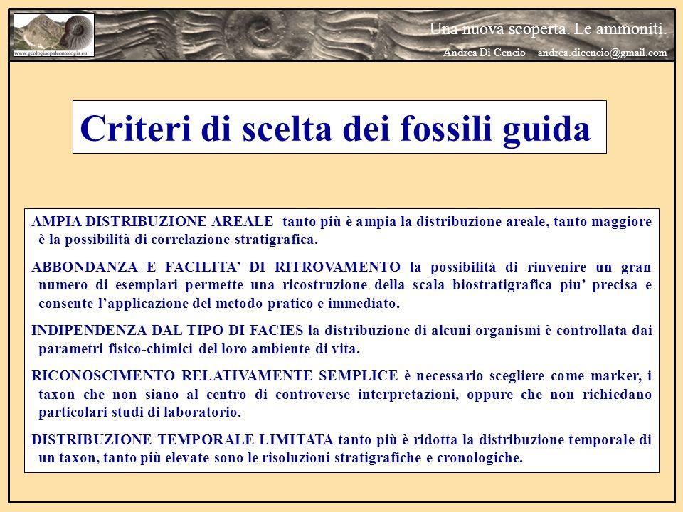 Criteri di scelta dei fossili guida