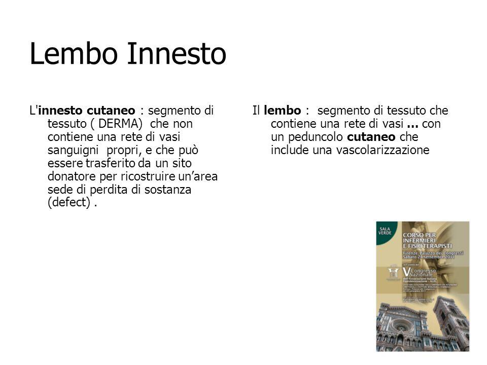 Lembo Innesto