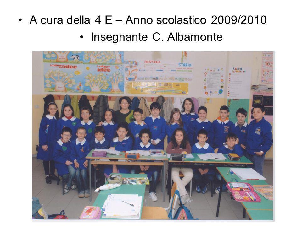 Insegnante C. Albamonte