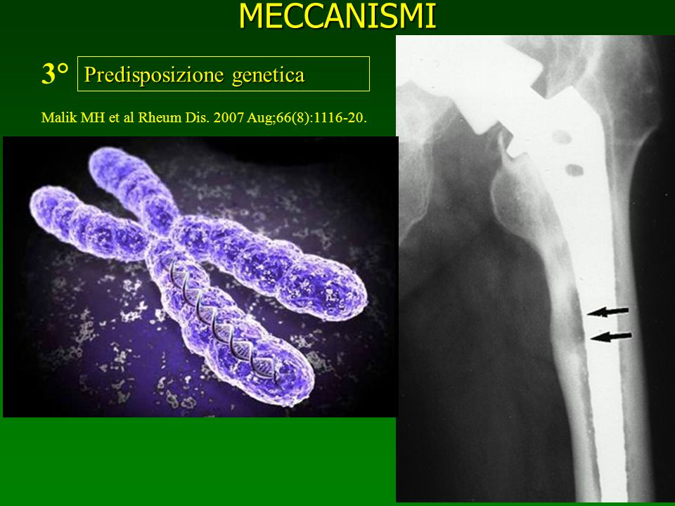 MECCANISMI 3° Predisposizione genetica