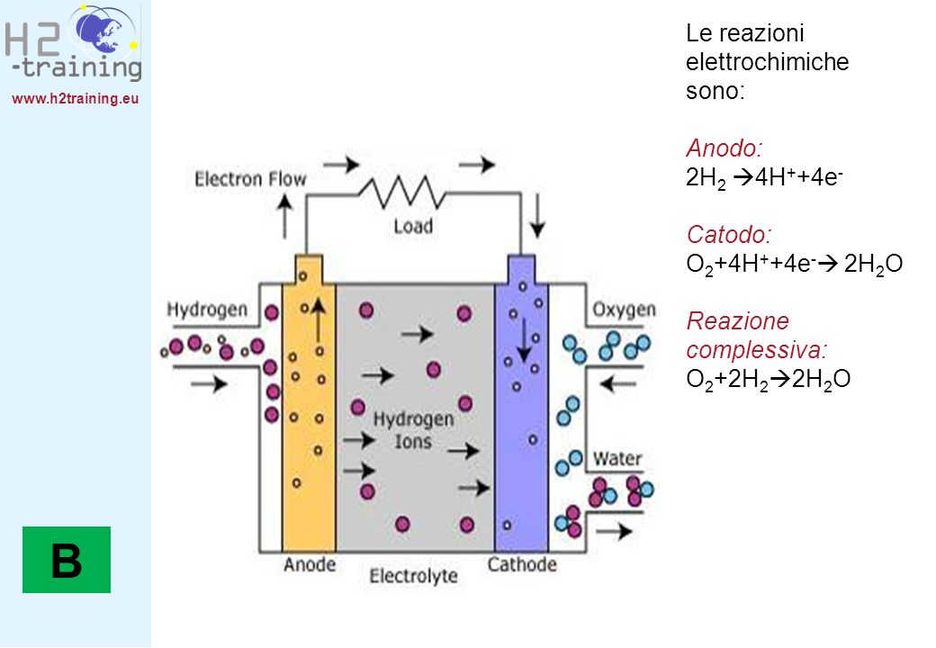 B Le reazioni elettrochimiche sono: Anodo: 2H2 4H++4e- Catodo: