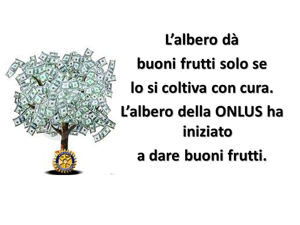 L'albero dà buoni frutti solo se lo si coltiva con cura
