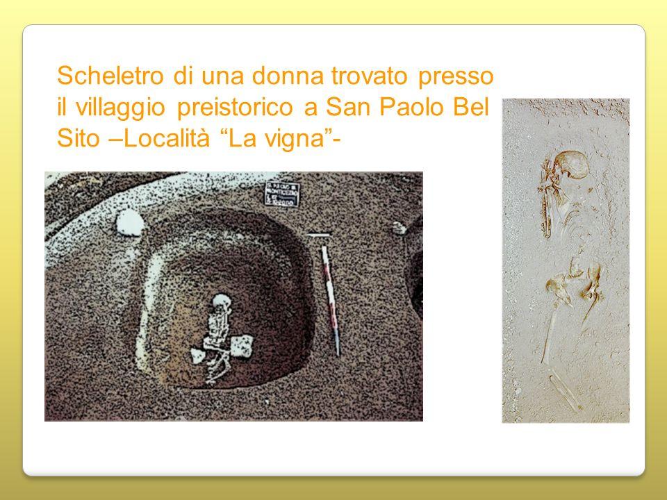 Scheletro di una donna trovato presso il villaggio preistorico a San Paolo Bel Sito –Località La vigna -