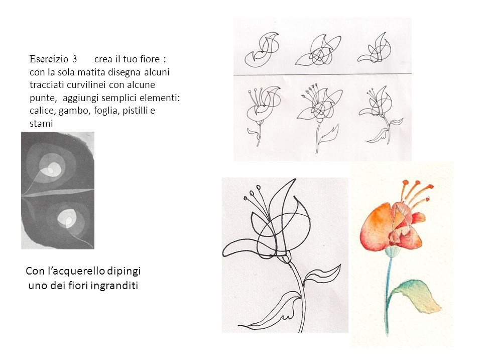 Con l'acquerello dipingi uno dei fiori ingranditi