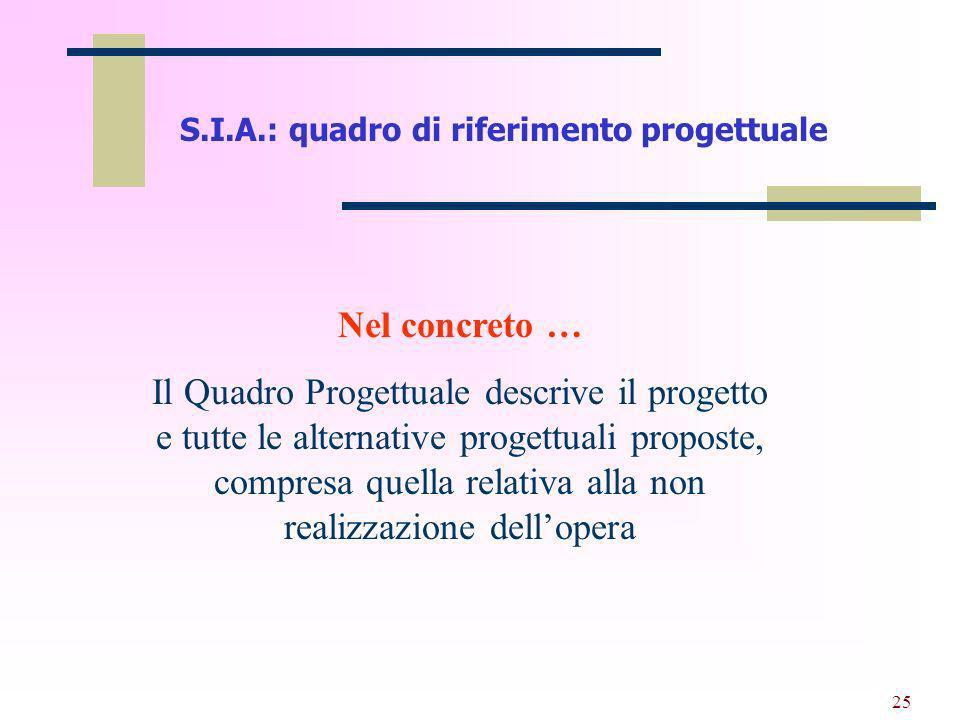 S.I.A.: quadro di riferimento progettuale
