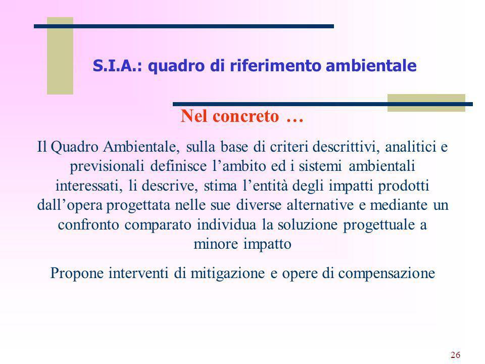 S.I.A.: quadro di riferimento ambientale