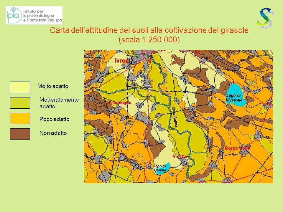Carta dell'attitudine dei suoli alla coltivazione del girasole (scala 1:250.000)