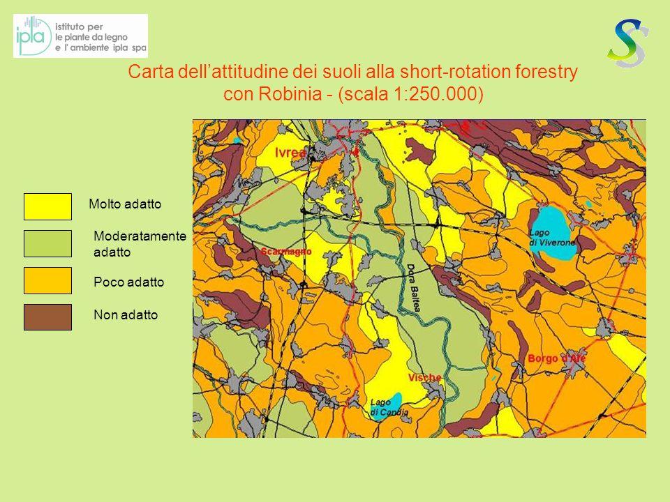 Carta dell'attitudine dei suoli alla short-rotation forestry con Robinia - (scala 1:250.000)