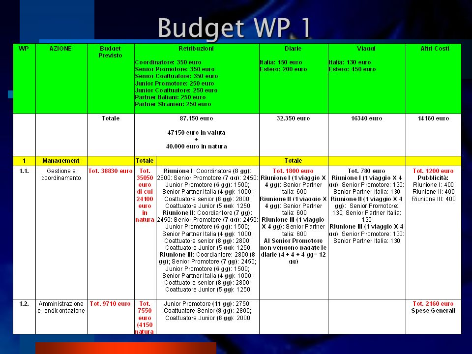Budget WP 1