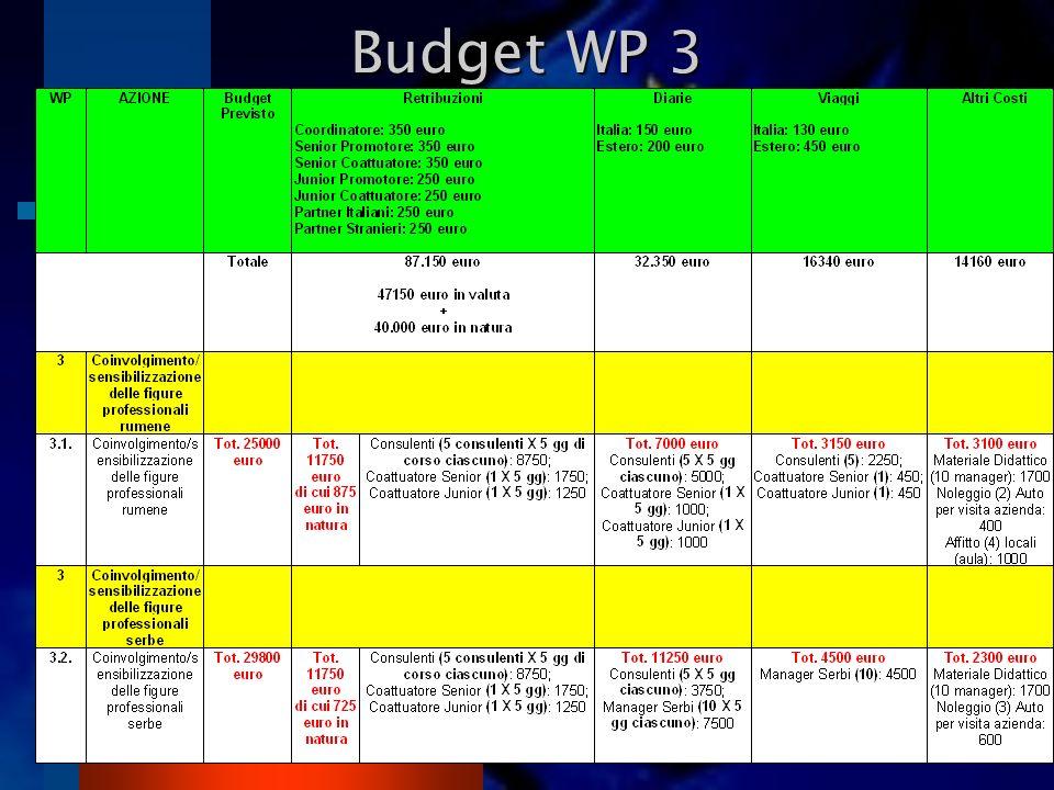 Budget WP 3