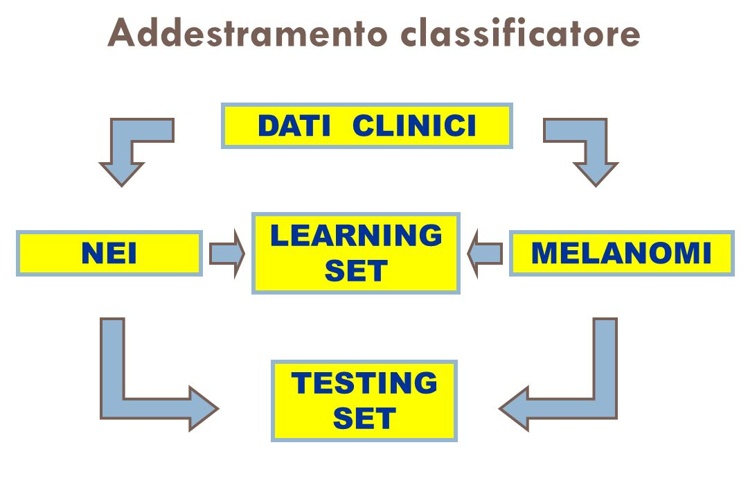Addestramento classificatore