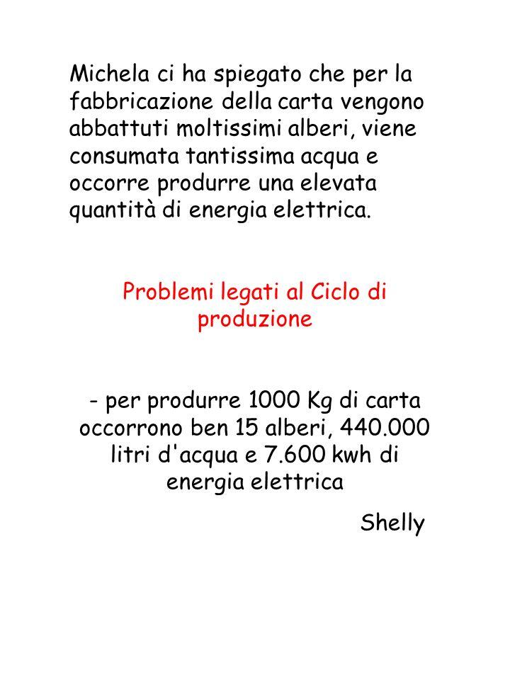 Problemi legati al Ciclo di produzione