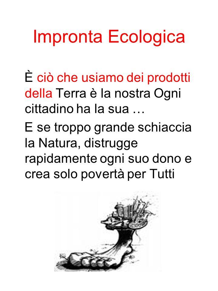 Impronta Ecologica È ciò che usiamo dei prodotti della Terra è la nostra Ogni cittadino ha la sua …