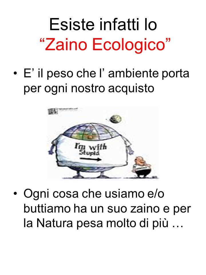 Esiste infatti lo Zaino Ecologico