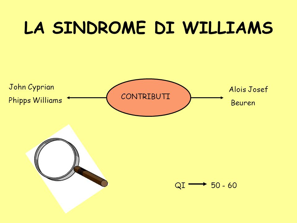 LA SINDROME DI WILLIAMS