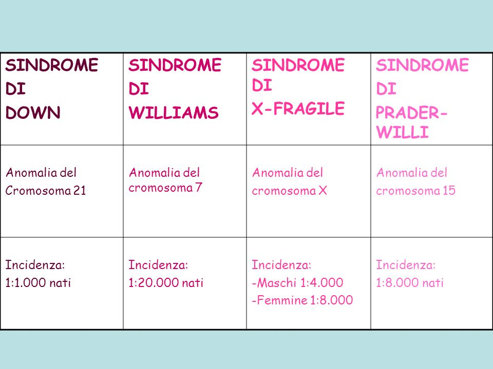SINDROME DI DOWN WILLIAMS SINDROME DI X-FRAGILE PRADER-WILLI