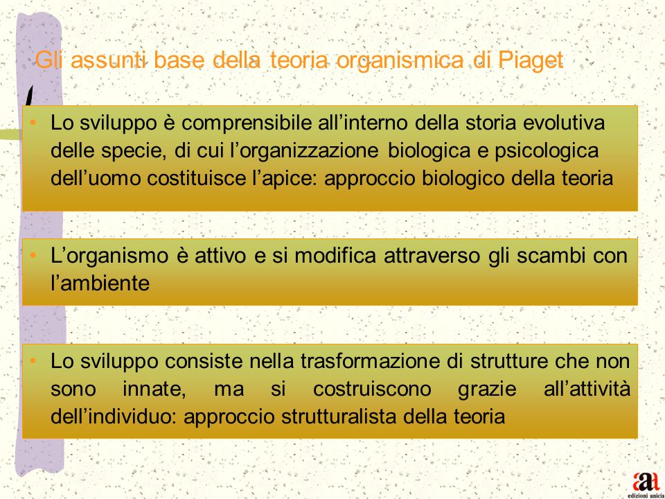 Gli assunti base della teoria organismica di Piaget