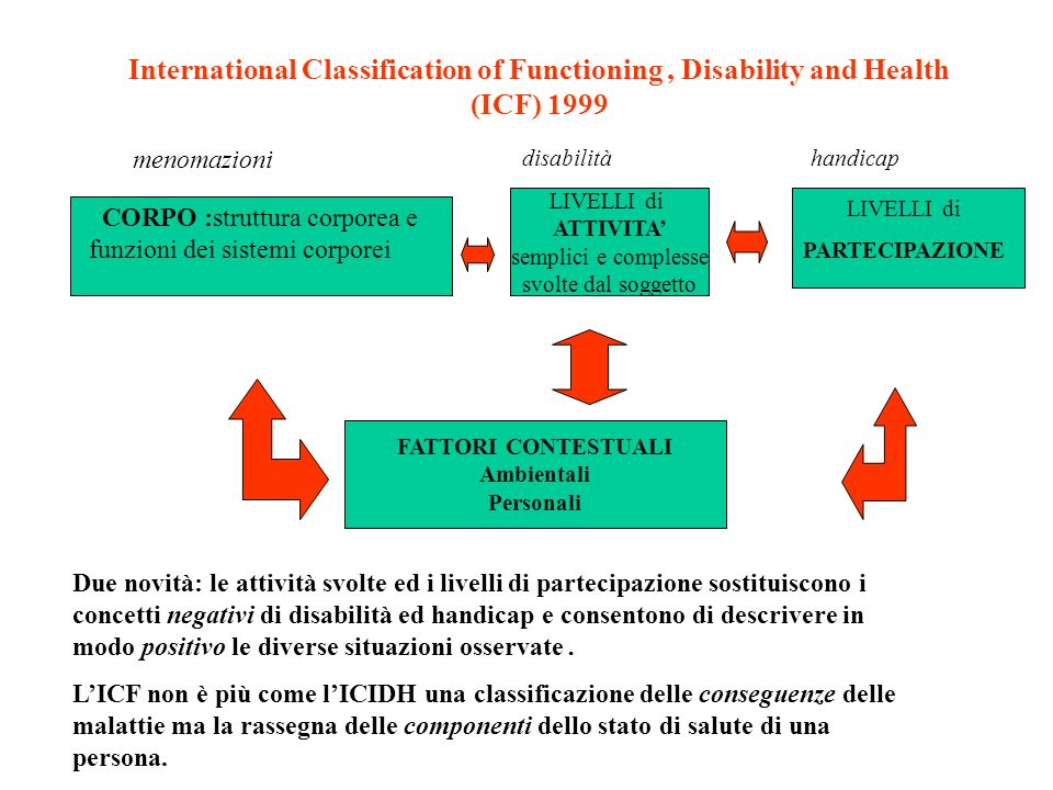 International Classification of Functioning , Disability and Health (ICF) 1999