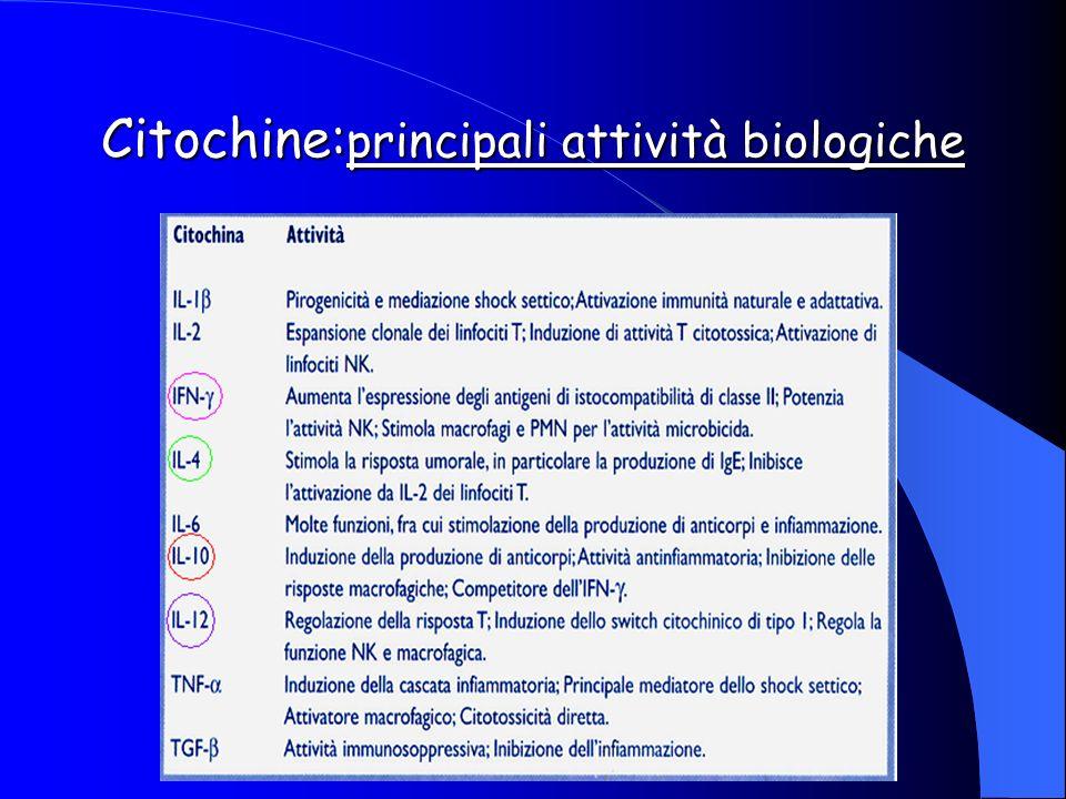 Citochine:principali attività biologiche