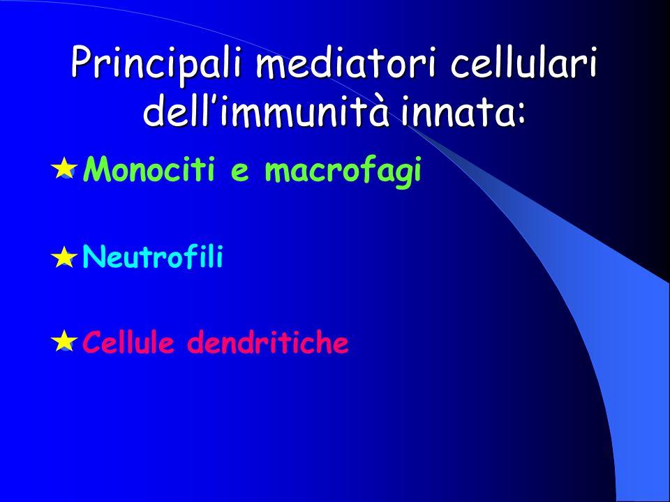 Principali mediatori cellulari dell'immunità innata: