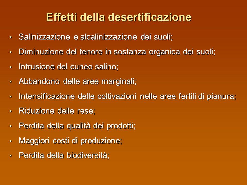 Effetti della desertificazione