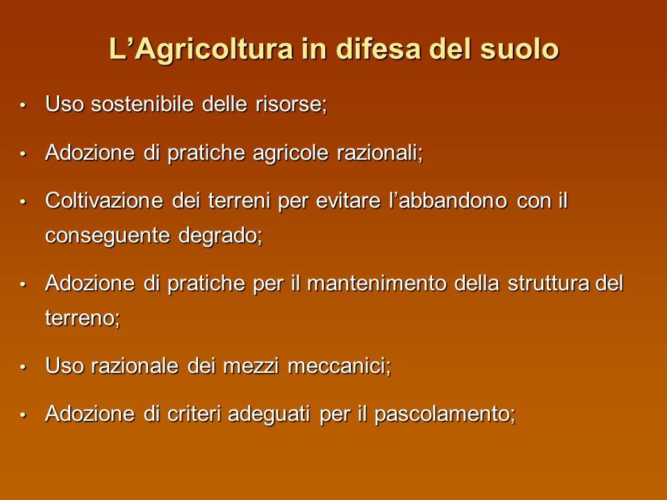 L'Agricoltura in difesa del suolo