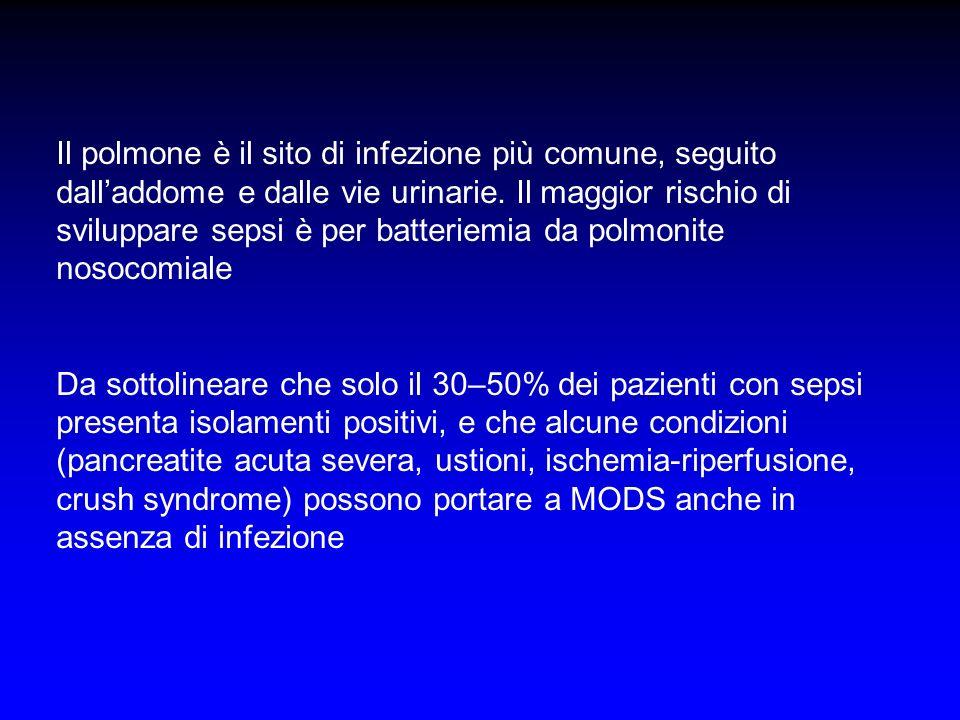 Il polmone è il sito di infezione più comune, seguito dall'addome e dalle vie urinarie. Il maggior rischio di sviluppare sepsi è per batteriemia da polmonite nosocomiale