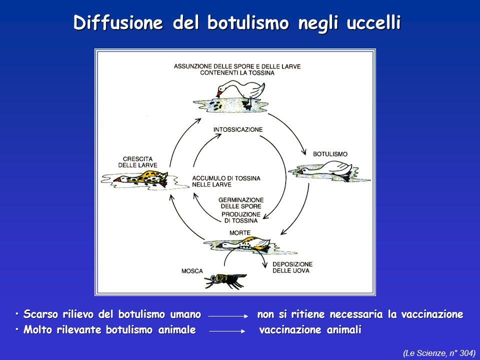 Diffusione del botulismo negli uccelli