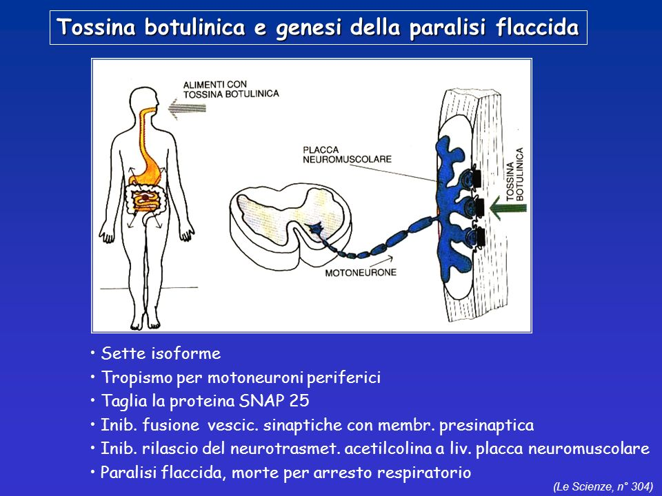Tossina botulinica e genesi della paralisi flaccida