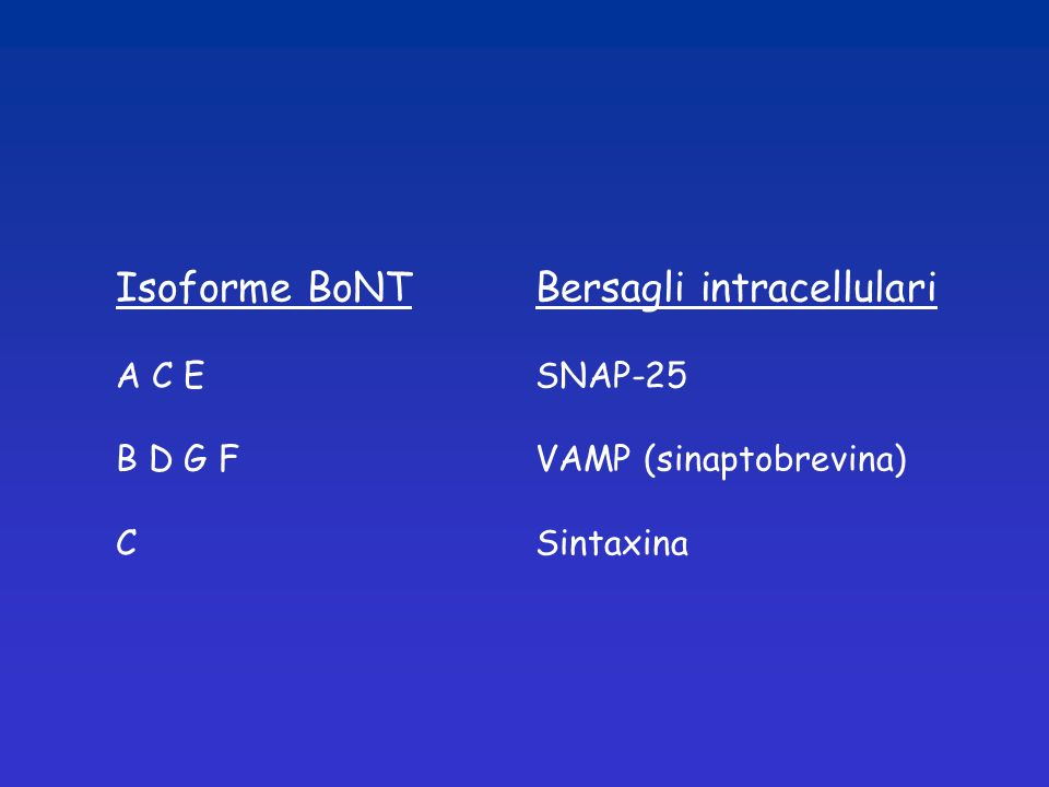 Isoforme BoNT Bersagli intracellulari