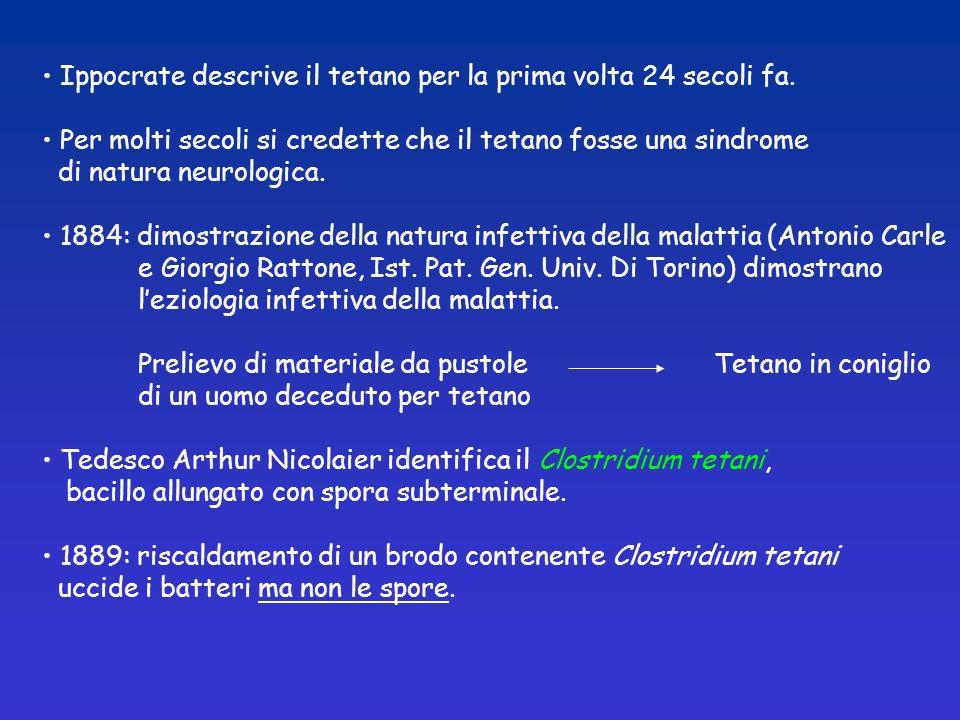 Ippocrate descrive il tetano per la prima volta 24 secoli fa.