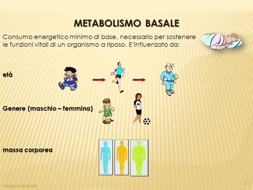 METABOLISMO BASALE Consumo energetico minimo di base, necessario per sostenere le funzioni vitali di un organismo a riposo. E'influenzato da: